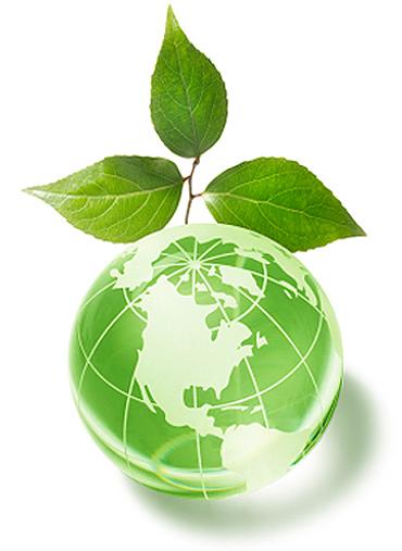 ecology-2.jpg
