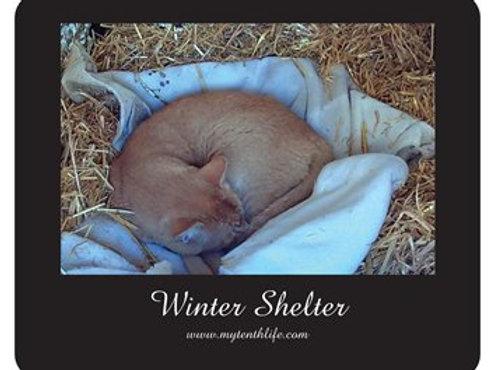 Winter Shelter Mousepad