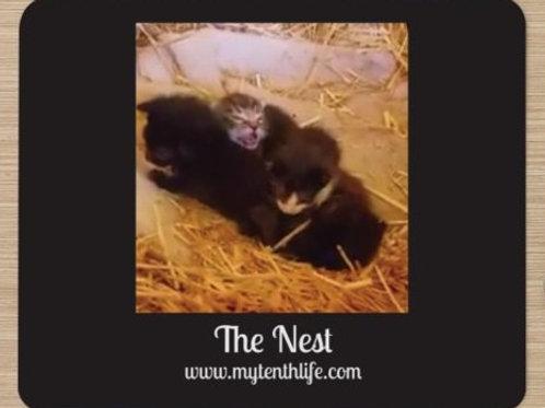 The Nest Mousepad