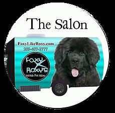 mobile dog grooming salon