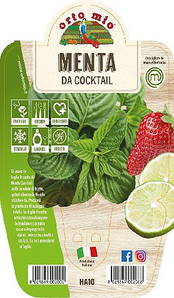 MENTA DA COCKTAIL V.14