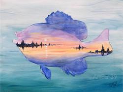 Sunfish Sunset