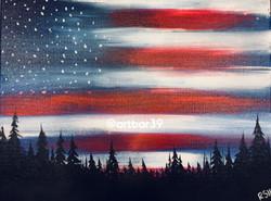 Patriotic Woods