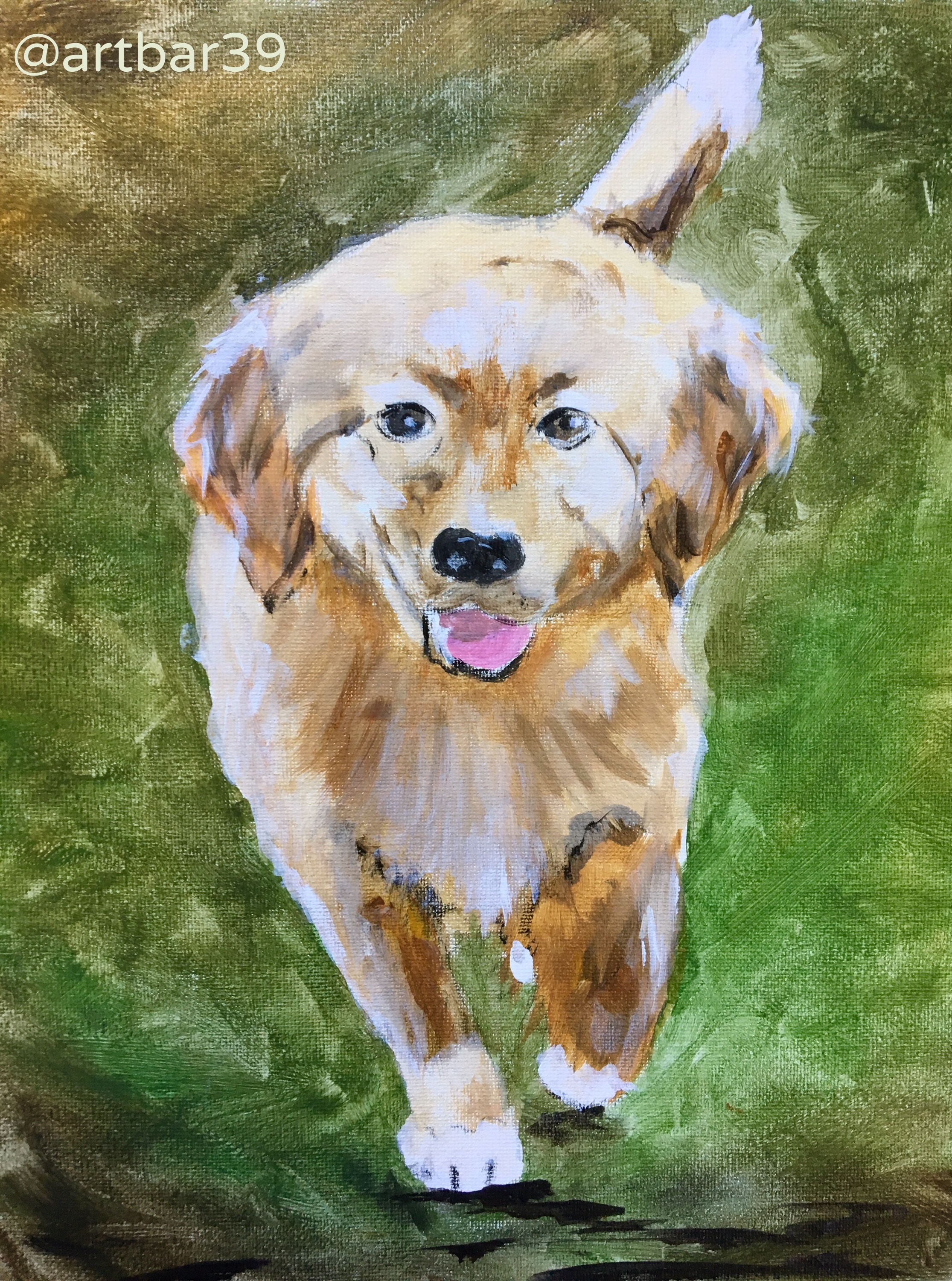 Paint Your Pet Example