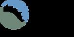 DSF-logo-RGB.png