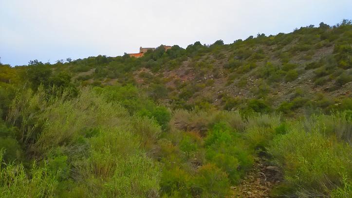 Paderne Castle 2.jpg