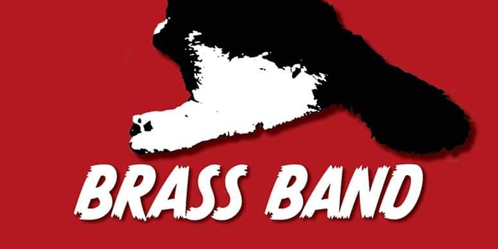 Fat Boi's Brass Band LIVE