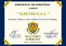 Electro%20F.A.L_edited.jpg