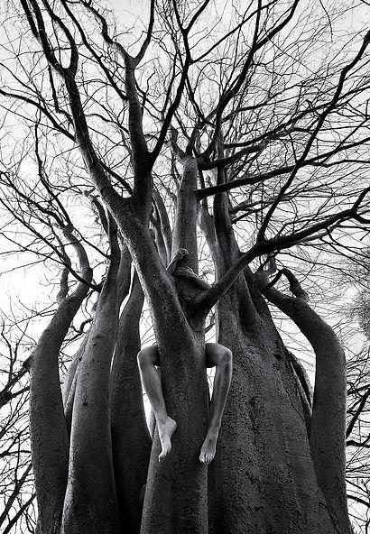 in a tree 9256572346[H].jpg