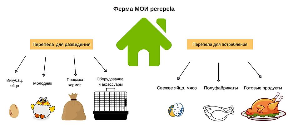 Бизнес модель МОИ perepela, копия.png