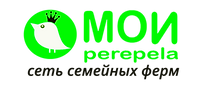 logo_pryamougolnoe_set.png
