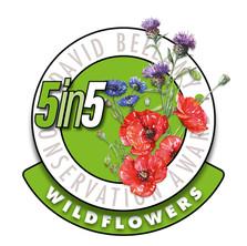 wild flowers award