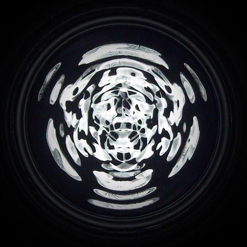Cymatic Skull