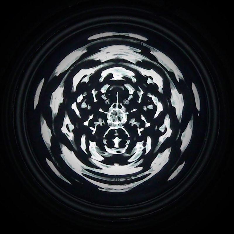 Cymatic Spider