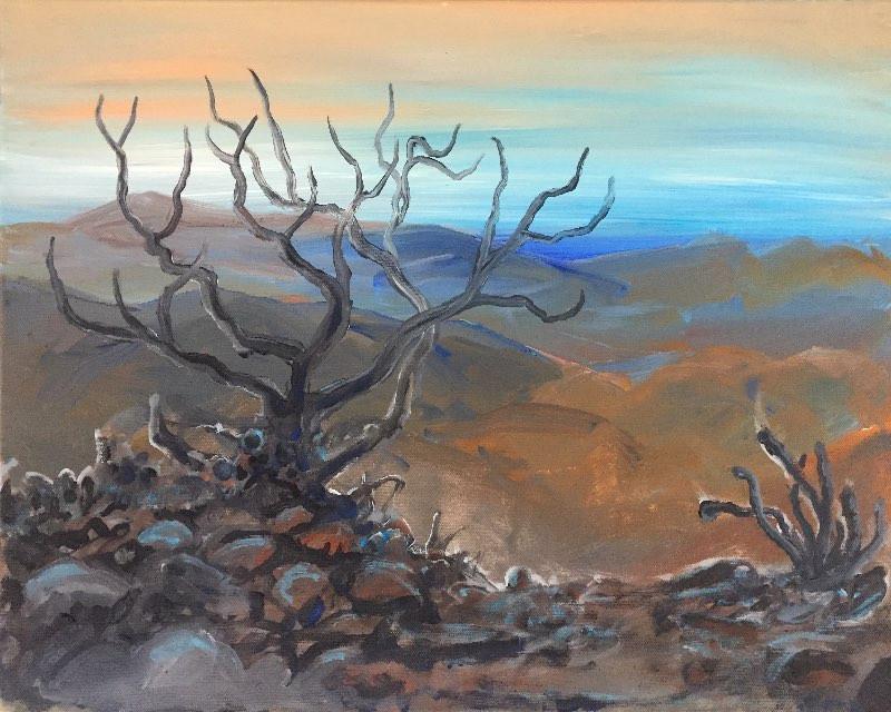 Distant Desert Oasis