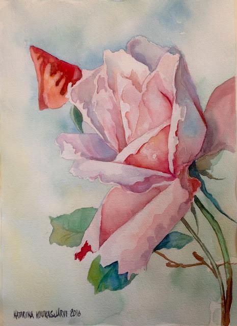 Ruusu ja nuppu