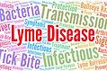 Lyme Logo.jpg
