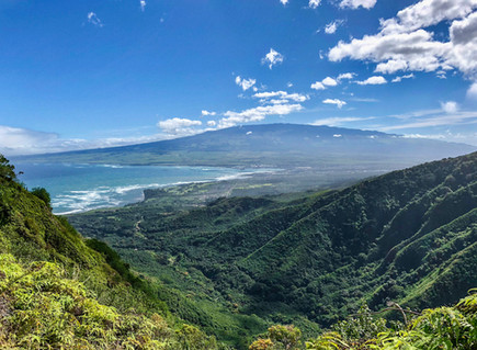 Health Coaches Unite on a Maui Ridge Hike