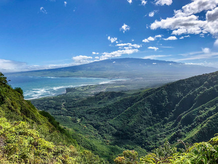 Health Coaches Unite on a Maui Ridge Hike