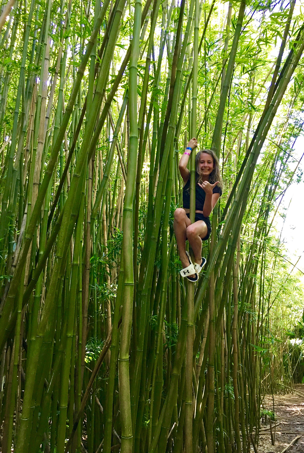 bamboo forest hike with kids