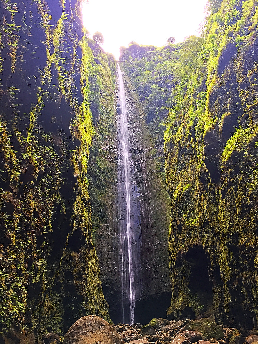 Local style giant Maui waterfall hike
