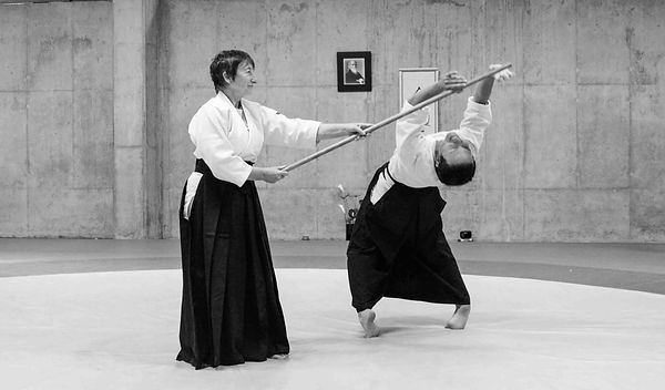 Aikido-Sensei_Lasserre.jpg
