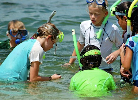 Top 5 Things To Do On Sanibel Island For Kids