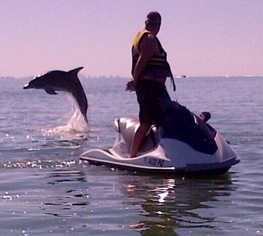 Ft. Myers Dolphin Tours