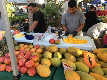 Sanibel Island Farmers Market - The Best Thing To Do On Sundays