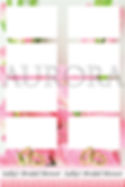 Pink Roses Candy Stripe