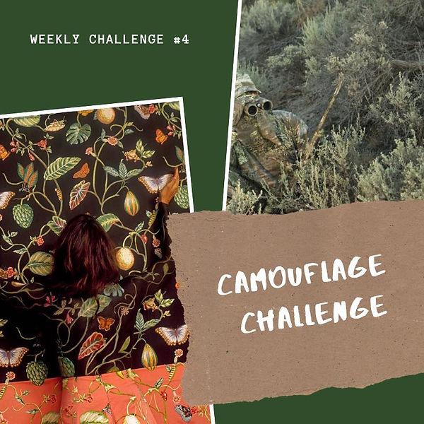 329 Week 4 Challenge - Camo.jpg