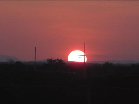 O Sol, o Ouro do Brasil.