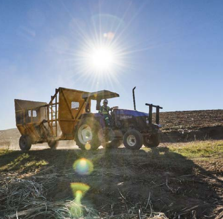 Tongaat Hulett produces a range of refined carbohydrate products from sugarcane