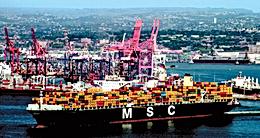 Mediterranean Shipping Company (MSC)