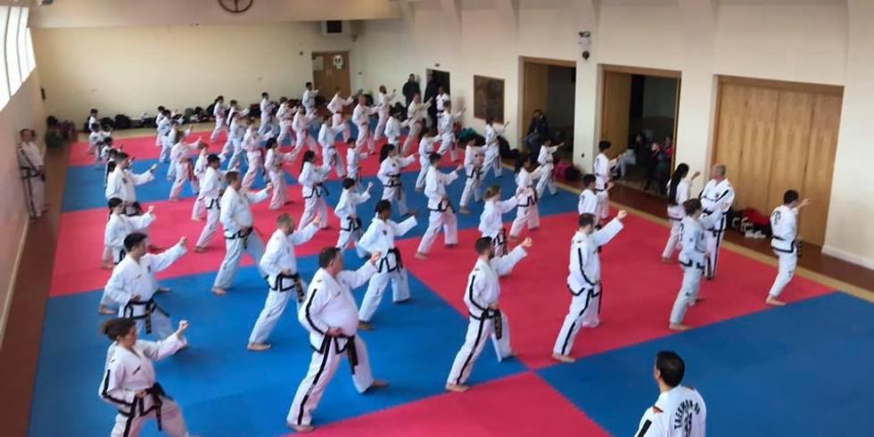 Seminar with Grandmaster Sahota (1)