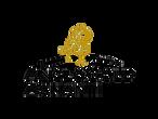 anglogold-ashanti-logo.png