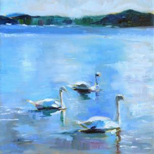 Svaner på Kadett-Tangen, Study. Oil on Canvas