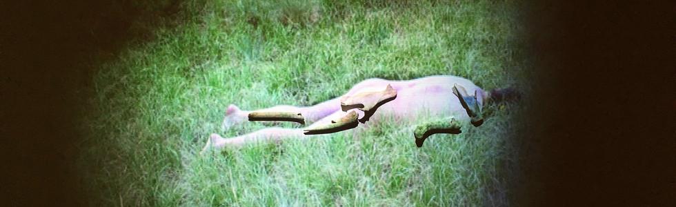 self-portrait as deer carcass