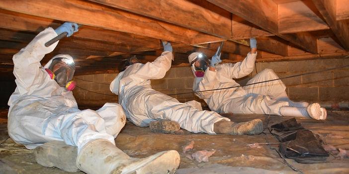 crawl space insulation service work done