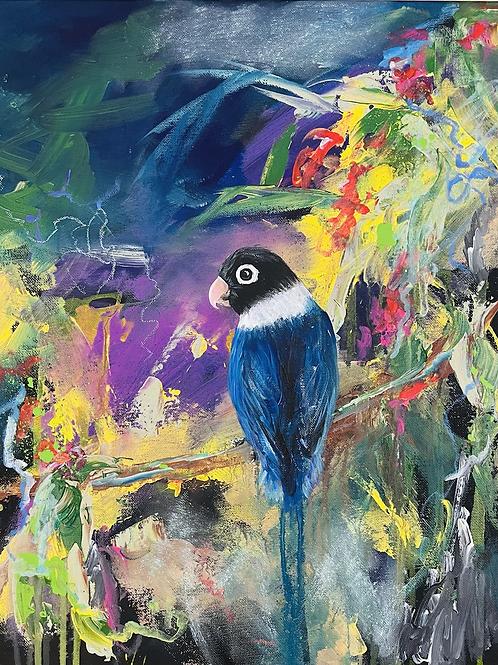 Billies Birds #1