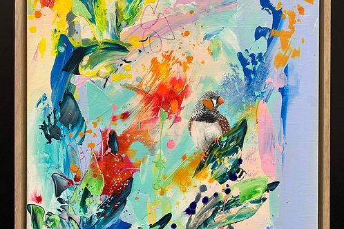 Zebra Finch Prints