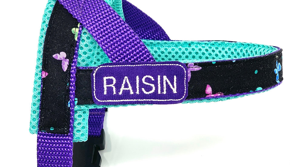 Personalized turquoise butterflies one-click harness