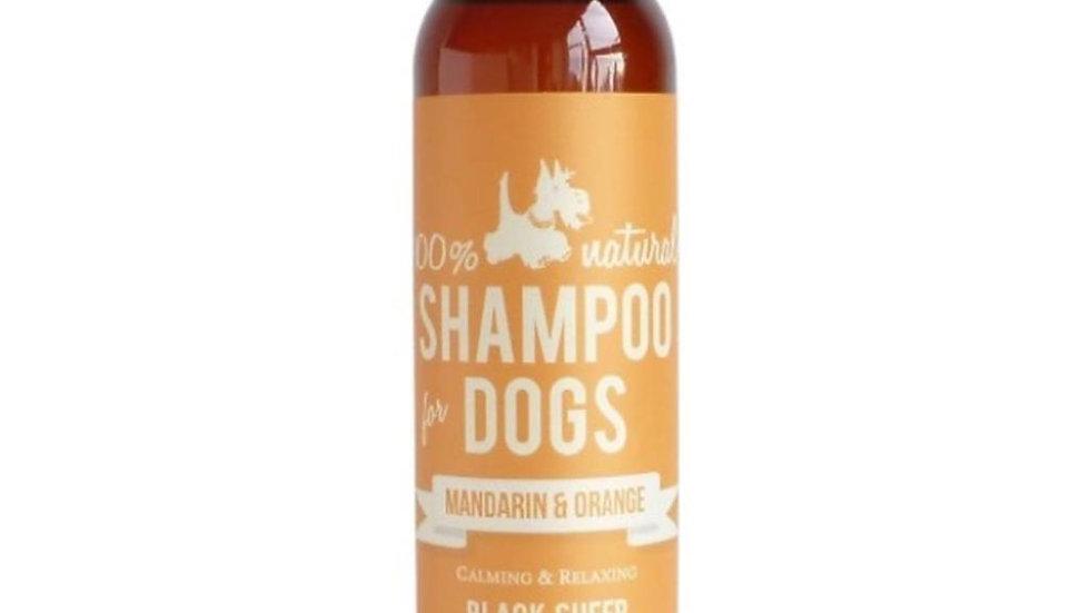 Mandarin & Orange Shampoo