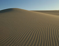 砂丘画像.jpg