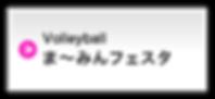 Volleyball ま〜みんフェスタ