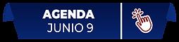 AGNDA-9.png