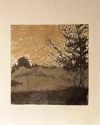 Fragmento de paisagem  - Flávia Fabio