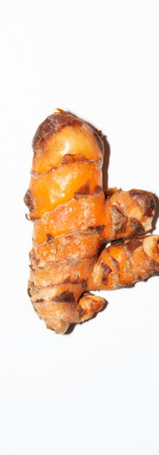 Turmeric Root (Kunyit Hidup)