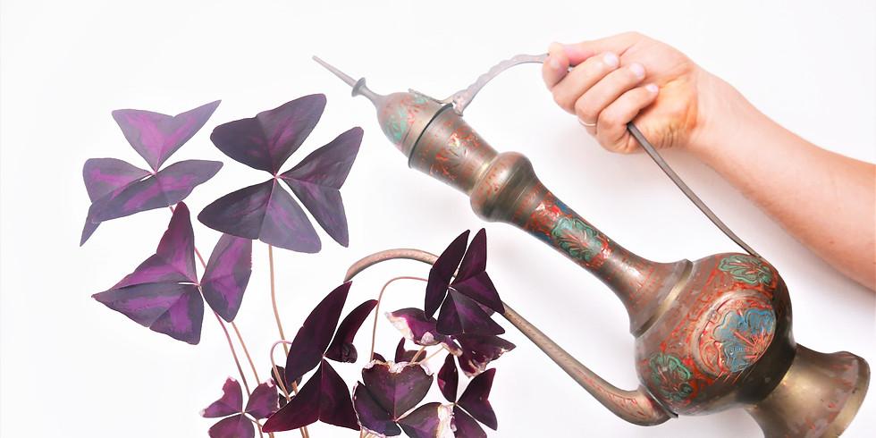 להחיות את הבית עם צמחים: כמעט שבועות 2021