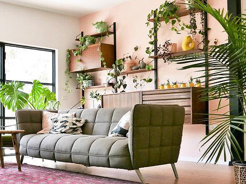 שובר לפגישת ייעוץ עיצוב הבית עם צמחים